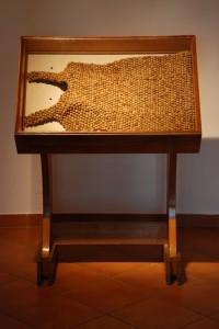 """Inga Raubaitė """"Išlikimas"""", 2010. Audimas, linas, kiškių ekskrementai."""