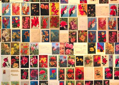 Pukyte_Pukyte_Atviruku su gelemis kolekcija