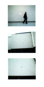 Kuginys_nato sienos2a