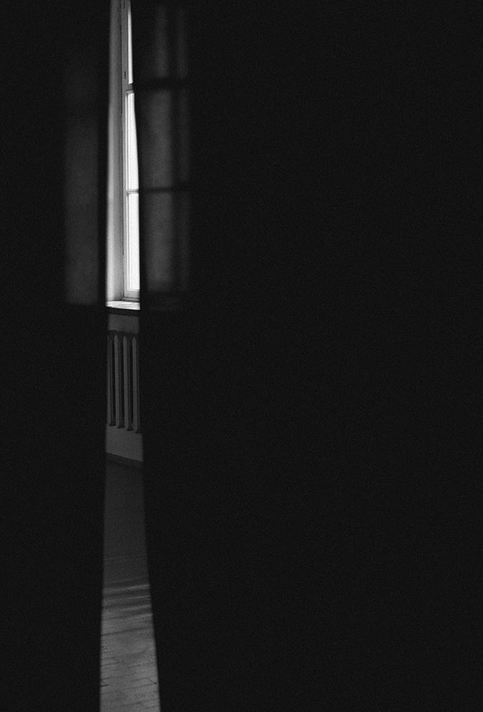 laimos-kunas-ir-tamsa (10)