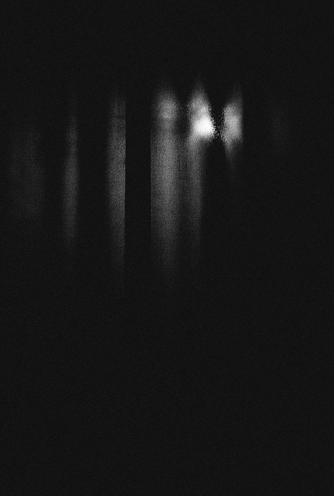 laimos-kunas-ir-tamsa (16)