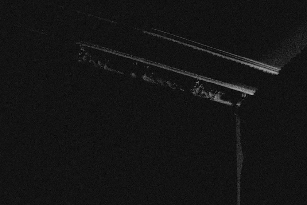 laimos-kunas-ir-tamsa (18)