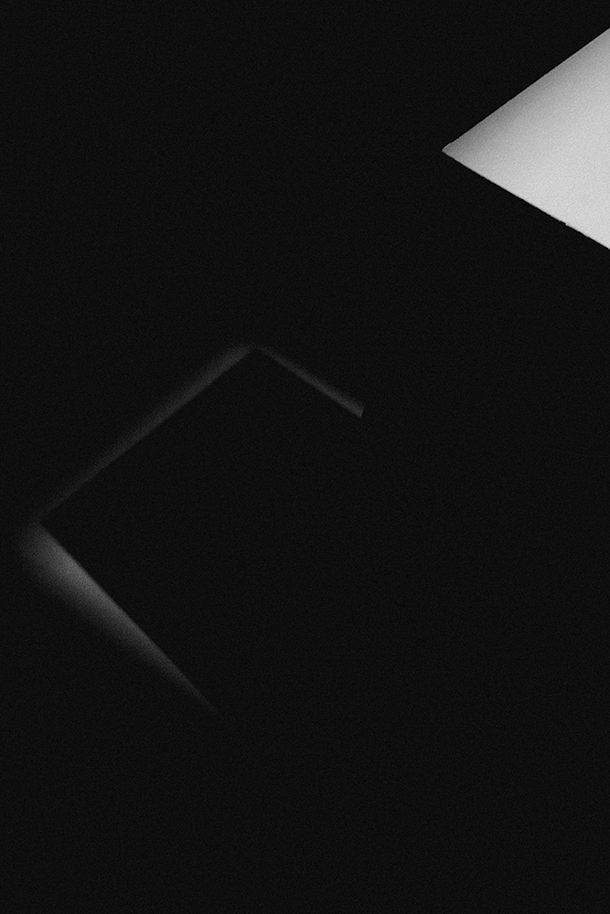 laimos-kunas-ir-tamsa (24)