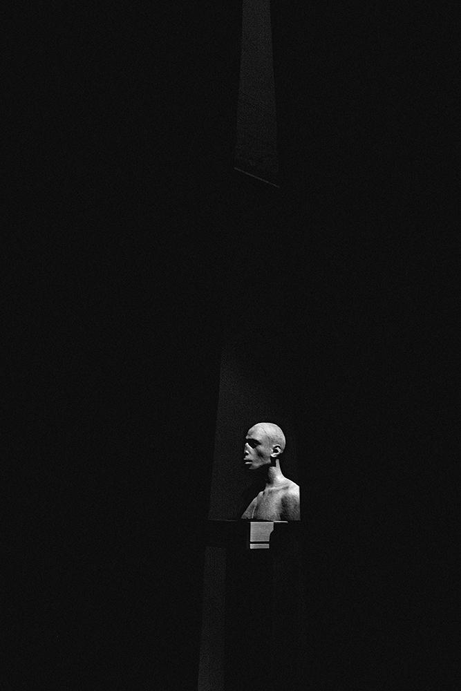 laimos-kunas-ir-tamsa (25)