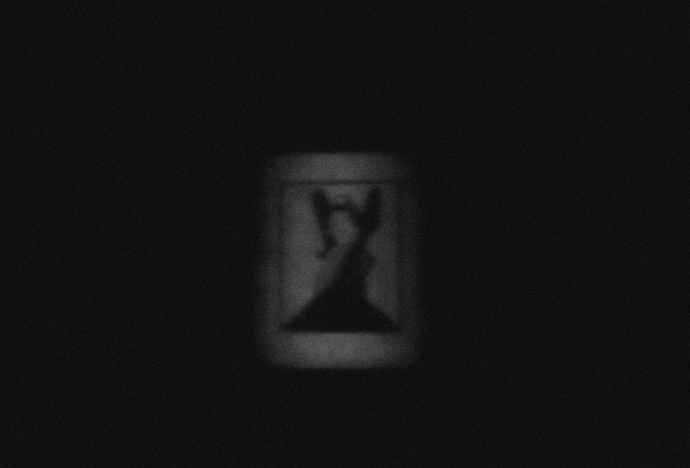laimos-kunas-ir-tamsa (7)